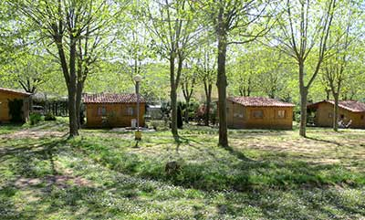 Bungalows in spring
