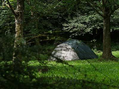 tienda en el prado del camping